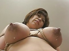 Lactation, Mothermilk with bound Tits by Spyro1958