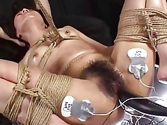 Domination Tube Videos